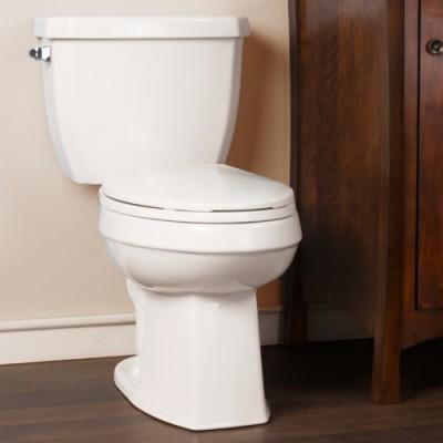 Toilette Cody